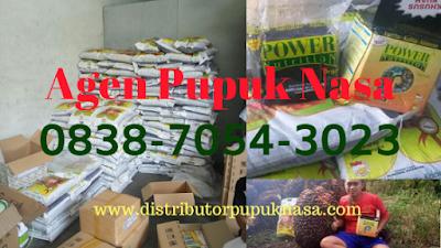 http://www.distributorpupuknasa.com/2019/12/cara-order-pupuk-sawit-nasa-yang-mudah-dan-gratis-ongkos-kirim.html