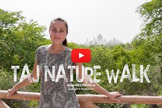 Weltreise. Taj Mahal und Taj Nature Walk in Indien besuchen. Wie teuer ist eine WELTREISE??