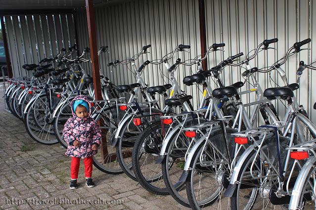 Bike rental Fietsverhuur Texel Eiland