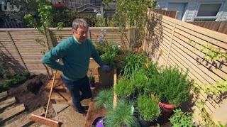 Alan planting