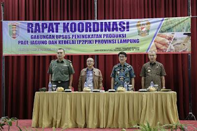 Gubernur Ridho Dukung Program Swasembada Pangan Nasional