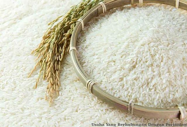 beras hasil pengolaan padi