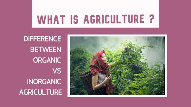Agriculture क्या है | Organic VS Inorganic Agriculture में किया अंतर है