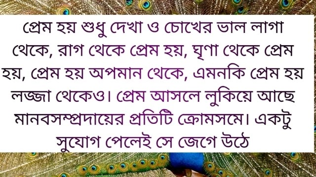 love quotes in bangla