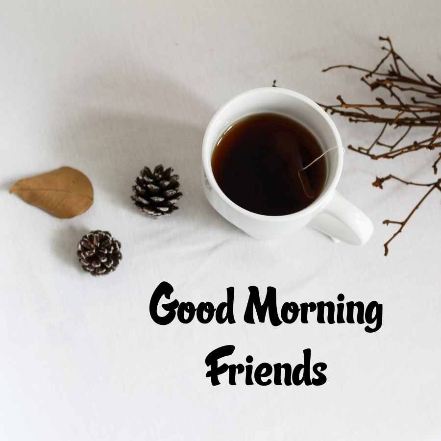 good morning wishes to friend