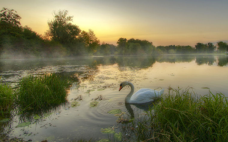 Madrugada en el lago - Morning on the lake by Boris Frkovic