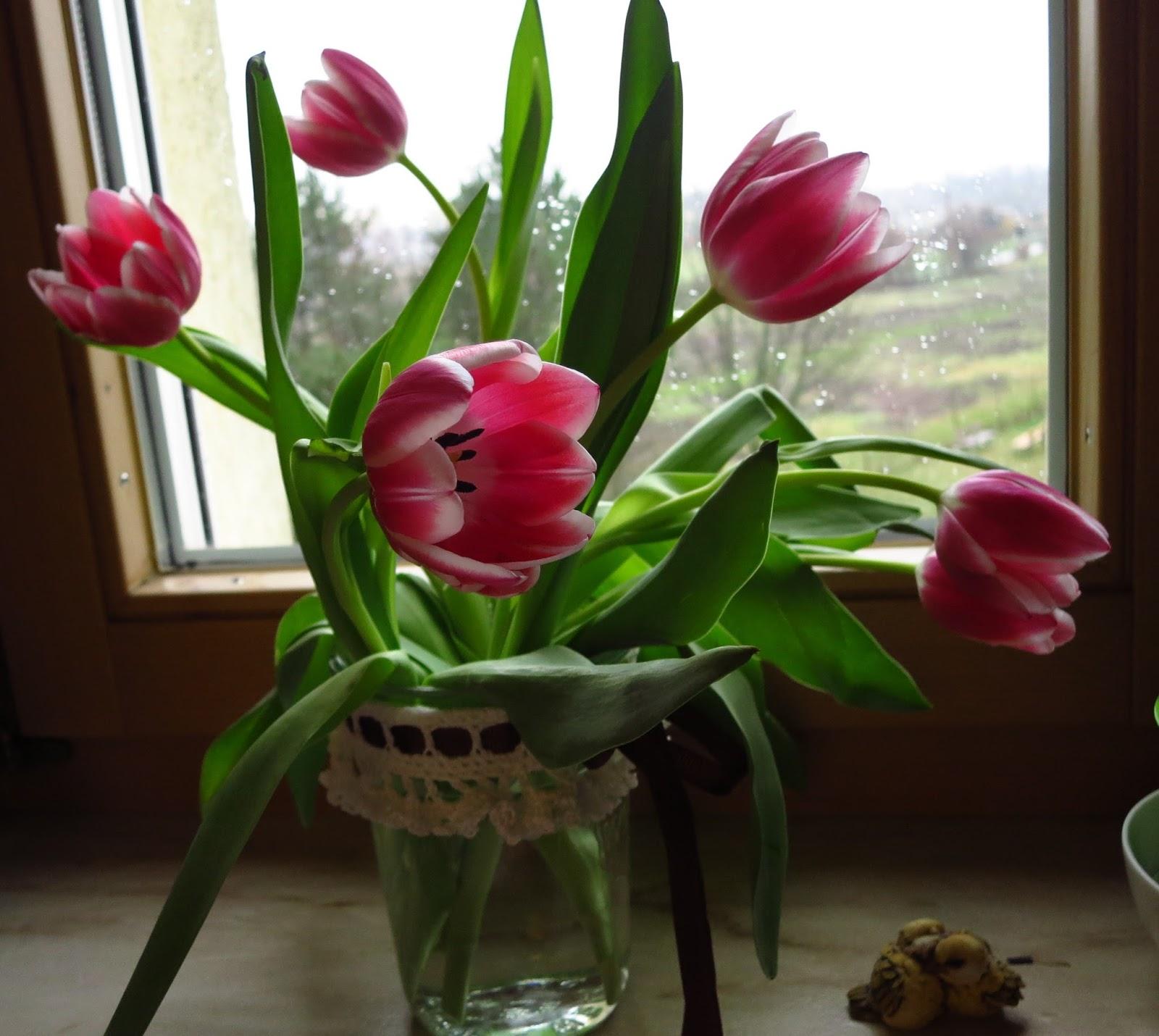fliederbaum tulpen f r bunt ist die welt. Black Bedroom Furniture Sets. Home Design Ideas