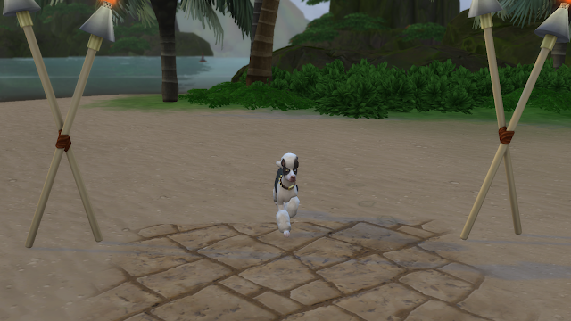Screen grab of a dog in sims 4