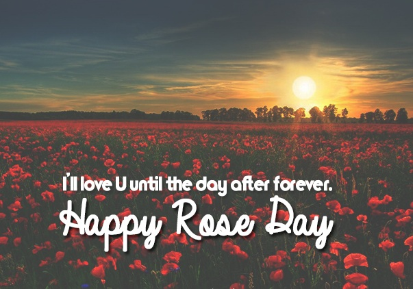 Rose Day Trust Whatsapp Status DP