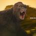 """""""Kong: A Ilha da Caveira"""" não inova, mas é um puta filmão da porra"""