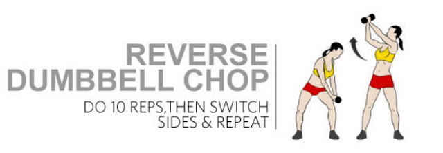 REVERSE-DUMBBELL-CHOP