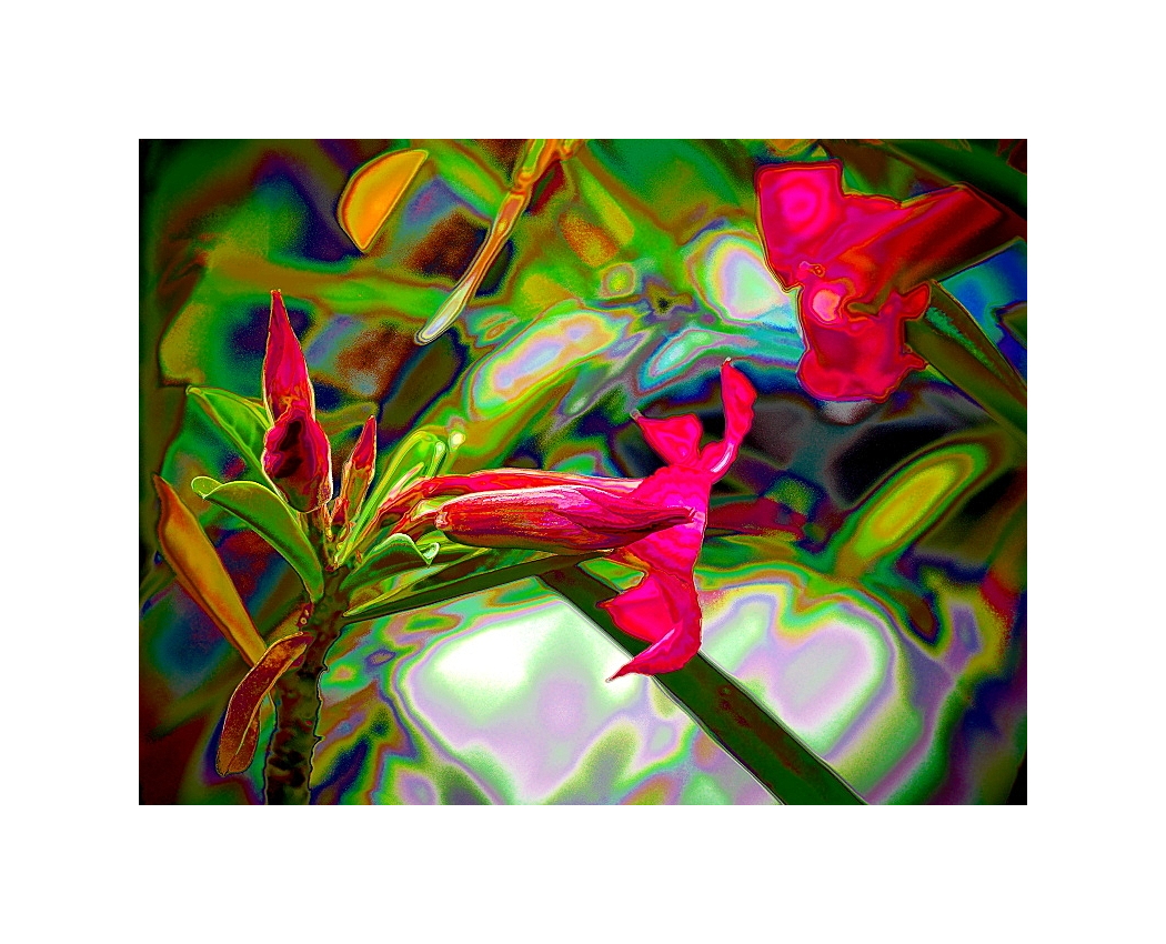 Digital Moments, Abstract Expressionism 04