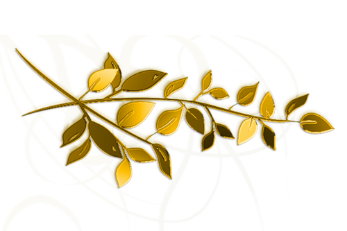 осень, лето, лес, травы, ветки, листья, разделители растительные, разделители с листьями, разделители с травами, разделители лесные, разделители для текста, разделители, для веб-дизайна, для сайтов, для блога, оформление текста, для оформления, для текста, для интернета, для страниц, украшения графические, дизайн графический, декор, декор для постов, декор для сайта, картинки, картинки для сайта,