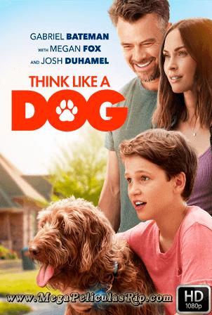 Think Like A Dog [1080p] [Latino-Ingles] [MEGA]