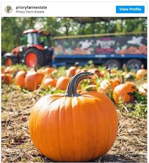 fattorie halloween