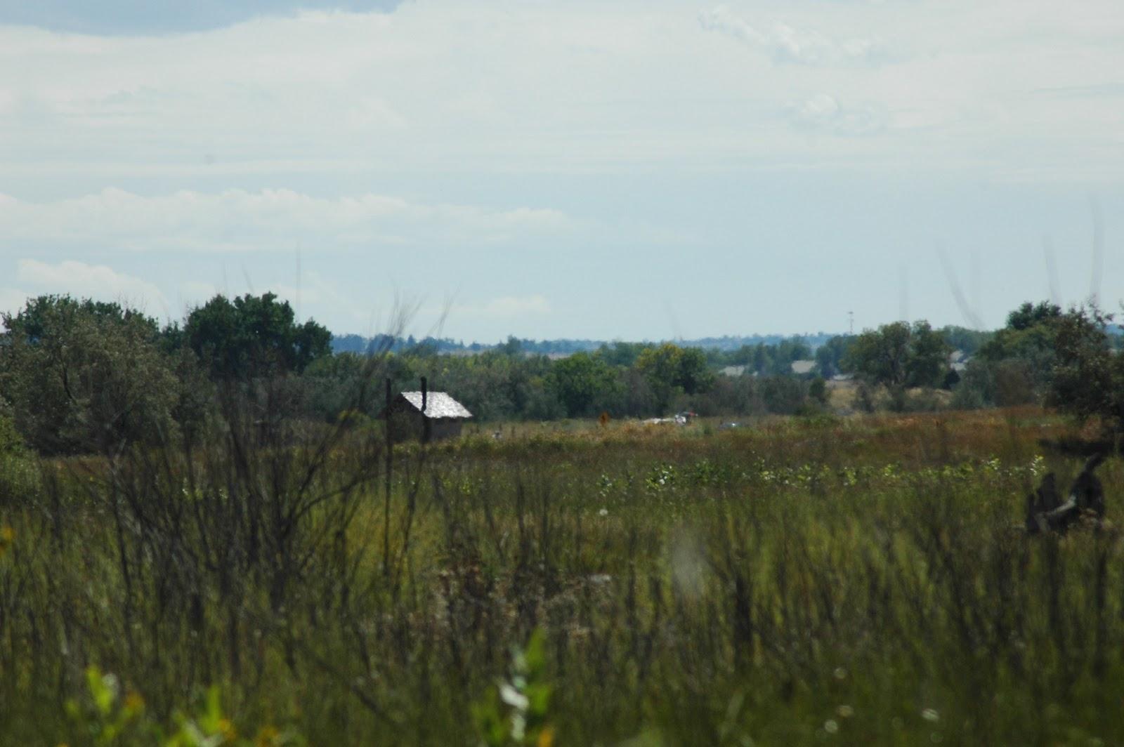 Explore Colorado Cherry Creek State Park Bird Watching