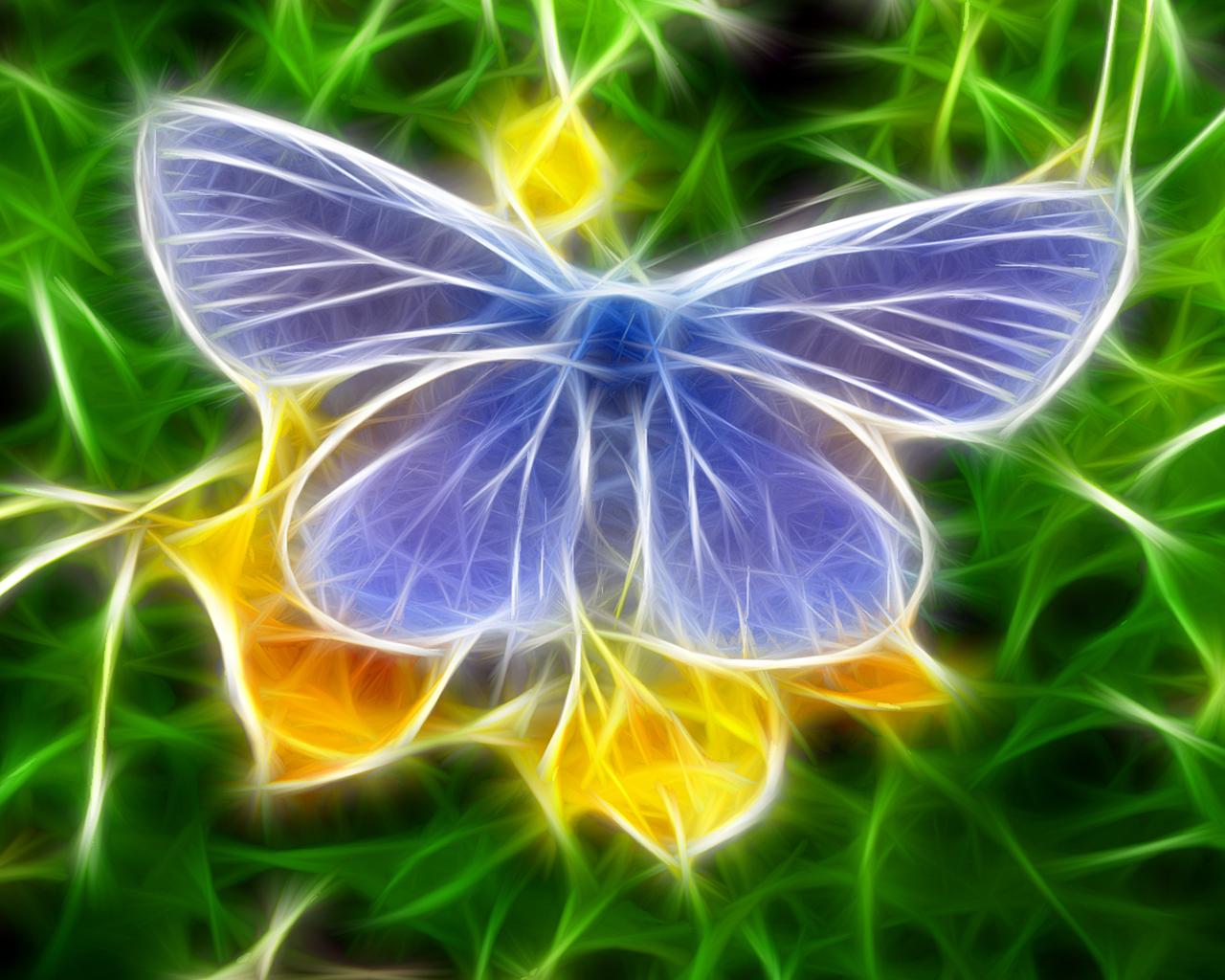 Neon Butterfly Desktop Background: Butterfly Wallpapers