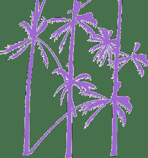 Palm-tree-vector
