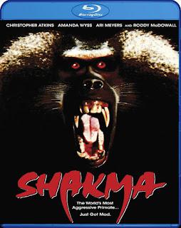 Shakma [BD25] *Subtitulada