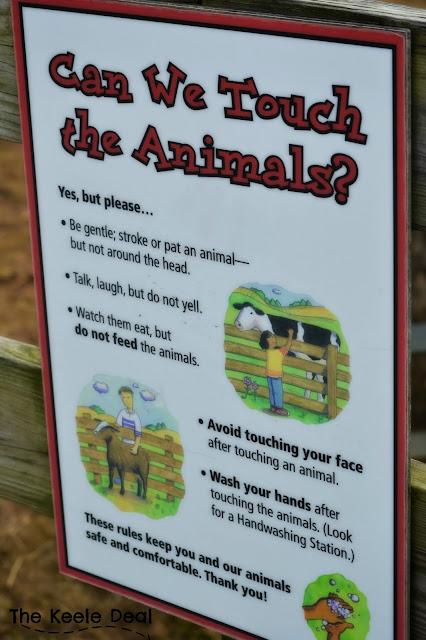 Area of the Zoo you can pet Farm Animals National Zoo Washington DC