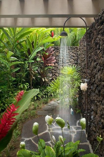 จัดต้นไม้ในห้องน้ำแบบธรรมชาติ