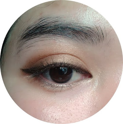 koji dolly wink by tsubasa masuwaka eyeshadow brown review test