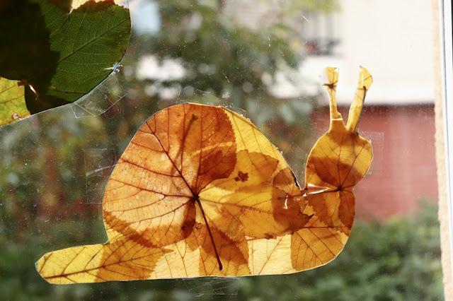 attrape soleil automne