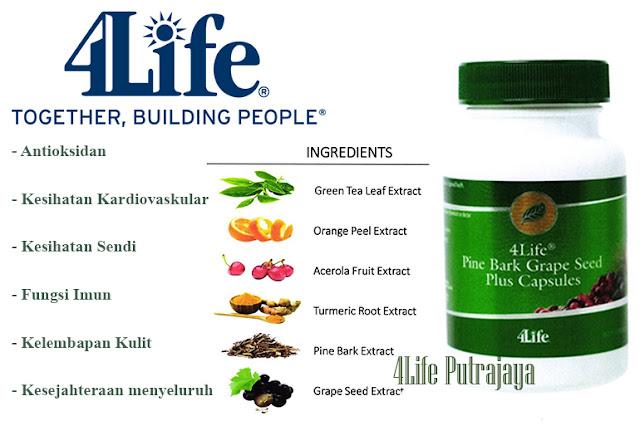 4Life Transfer Factor Pine Bark Grape Seed Plus Capsules