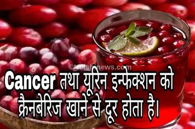 Cancer तथा यूरिन इन्फेक्शन को क्रैनबेरिज खाने से दूर होता है