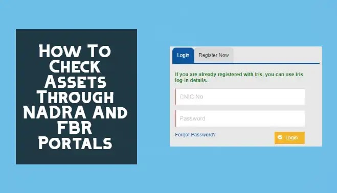 How To Check Your Asset Details Through NADRA And FBR Portals