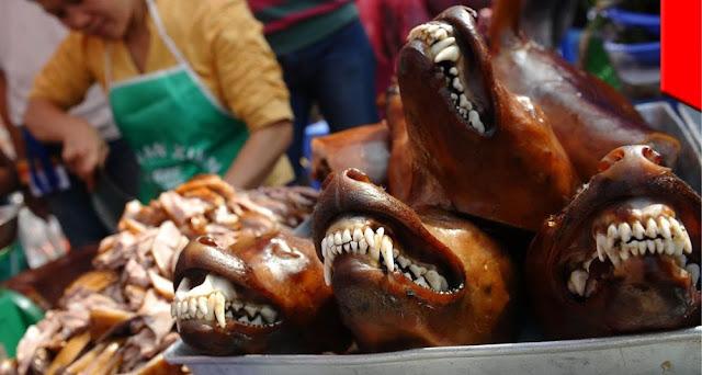 Makan Dading Anjing Mentah Campur Kelapa, Puluhan Orang di Simalungun Keracunan
