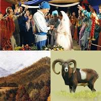 ciganos europeus casando, muflão parado, montanha arborizada