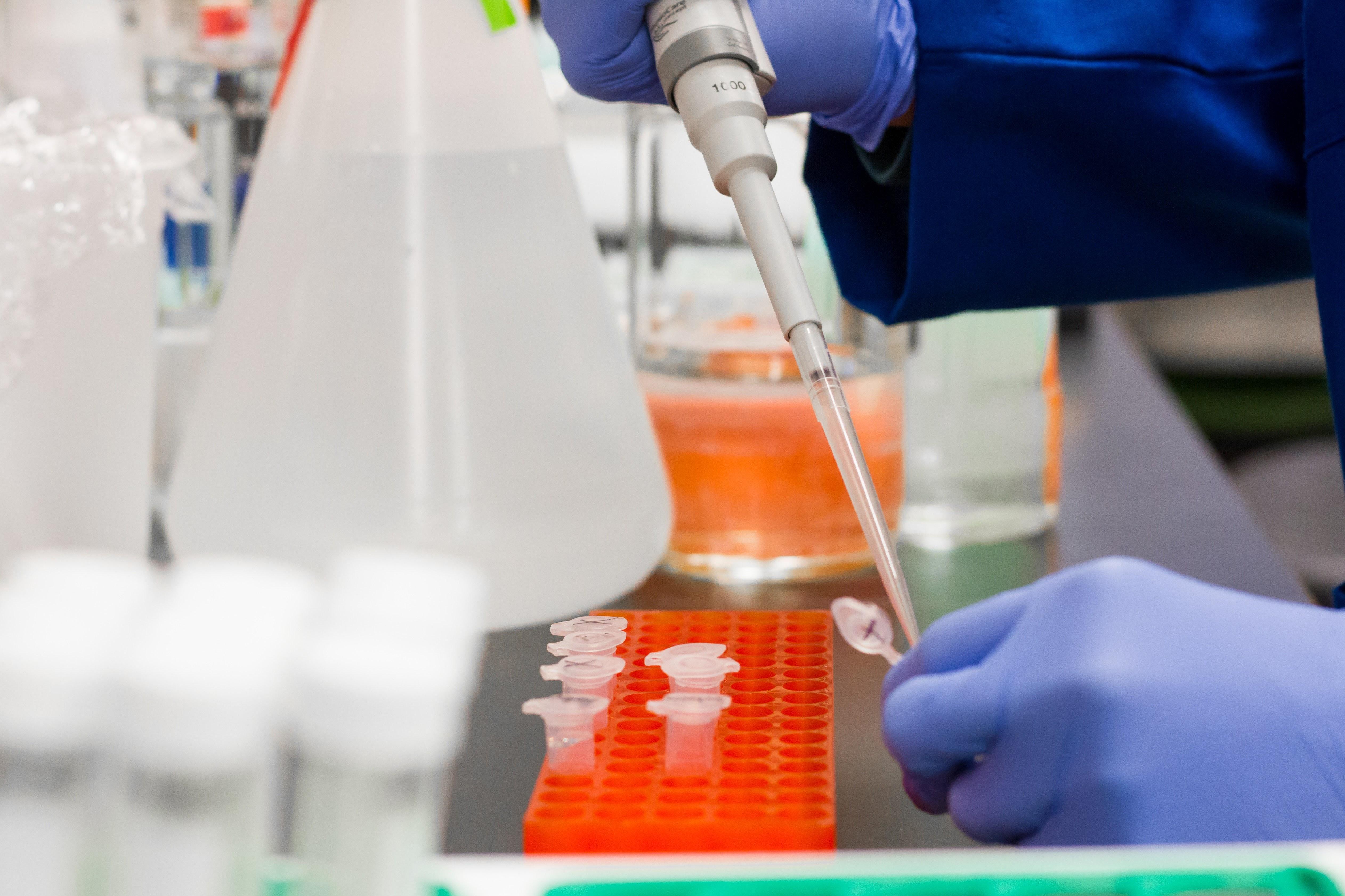 Δωρεάν μαζικά rapid test στο Διδυμότειχο – Οδηγίες
