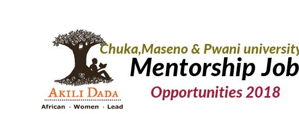 Mentorship at Akili Dada job application