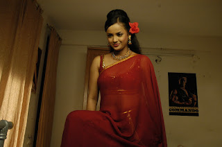 Tanu-Roy-red-hot-saree