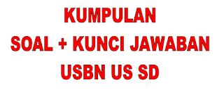 Soal USBN  Bahasa indonesia SD + Kunci Jawaban Dan Pembahasan Terbaru 2020