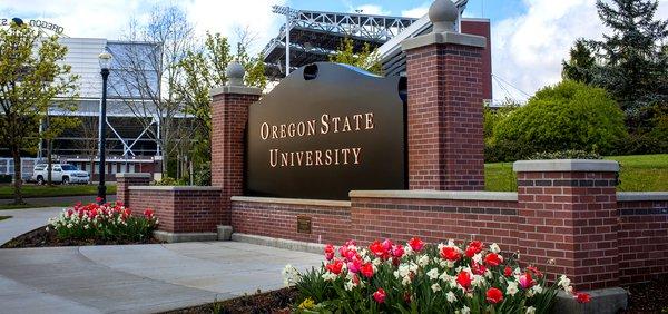 فرصة جديدة منحة  لدراسة البكالوريوس في جامعة أوريغون في الولايات المتحدة الأمريكية