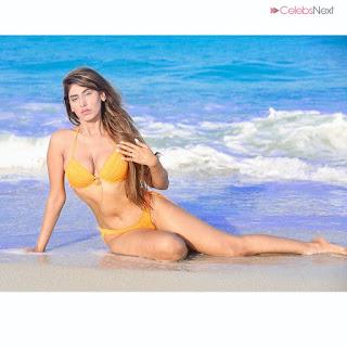 Heena Harwani Spicy Indian Bikini Model   .xyz Exclusive 013.jpg