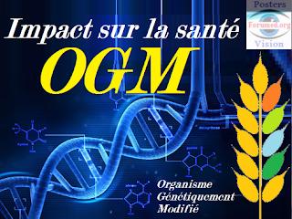 OGM Organisme génétiquement modifié Agriculture et santé