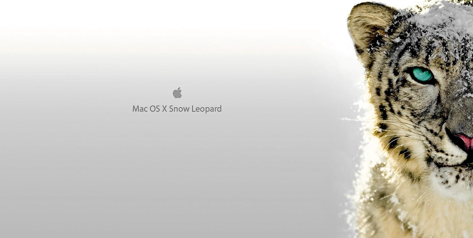 Mac os x leopard 10 5 4 9e25 retail dmg : mingskelbio