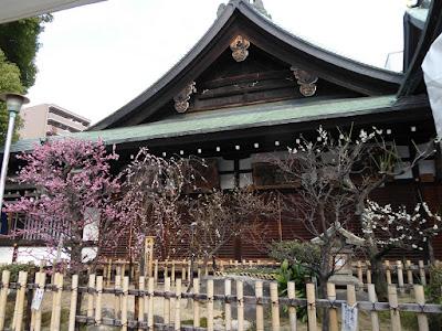 大阪天満宮 梅と絵馬