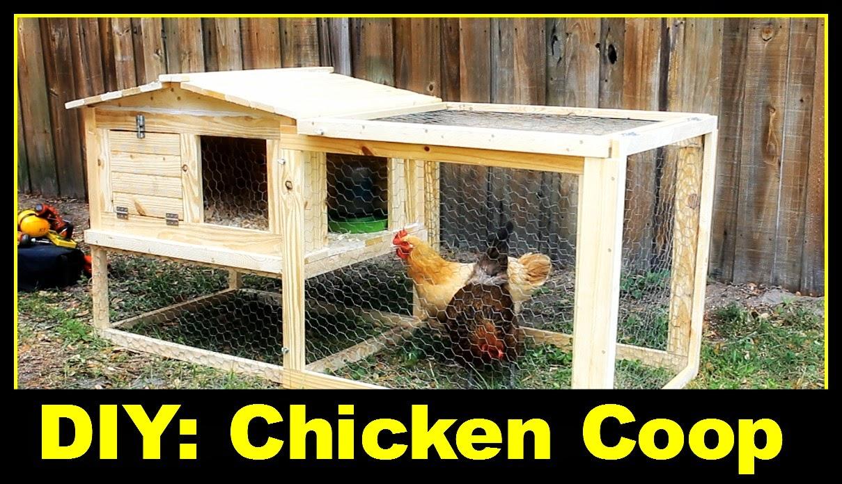 Simply Easy DIY: DIY: Small Backyard Chicken Coop
