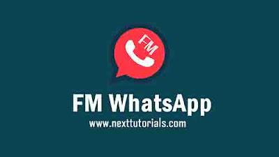 Download FMWhatsApp v8.60 Apk Mod Latest Version Android,Aplikasi FMWa v8.60 Terbaru 2020,tema fmwhatsapp keren 2020,whatsapp mod anti banned