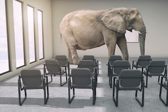 Elephant in the Room: Instruction in Higher Education