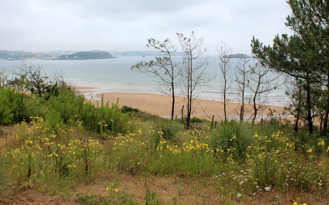 Playa de Somo. Reserva natural del Surf. Ribamontán al Mar