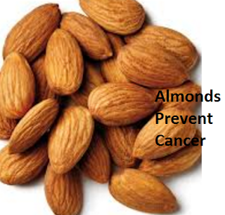 Health Benefits of Almond or Badam Prevent Cancer