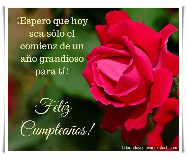 Tarjetas, cumpleaños, ¡Espero, sea, sólo, comienz, grandioso, Spanish Birthday Card, Red rose
