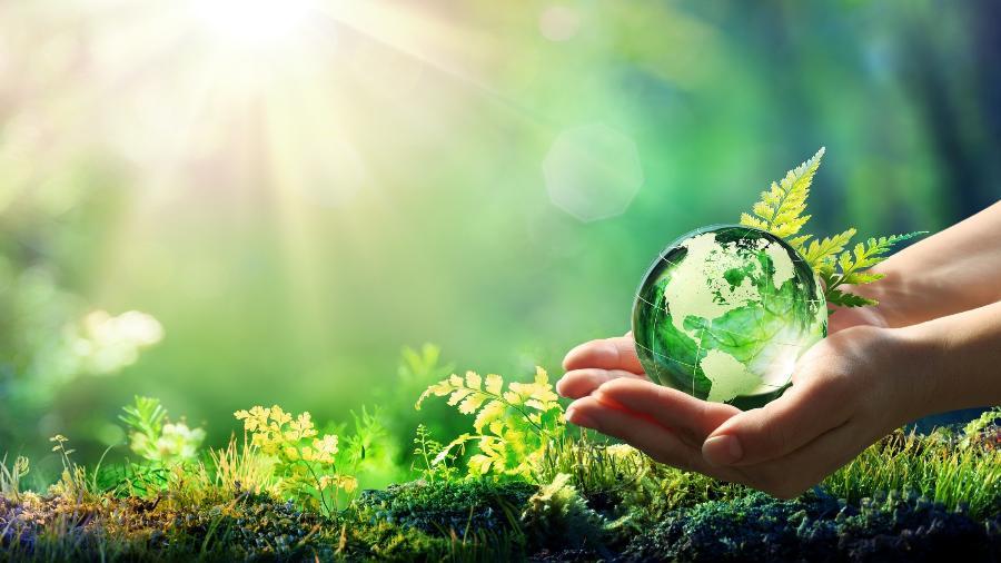 ESTUDO: O excesso de CO2 está tornando o planeta mais verde, não o matando