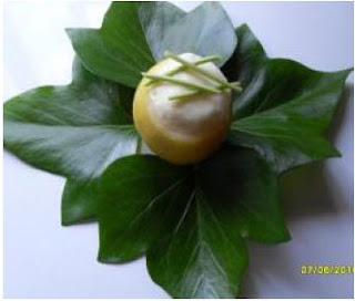 Crema helada de limón light thermomix
