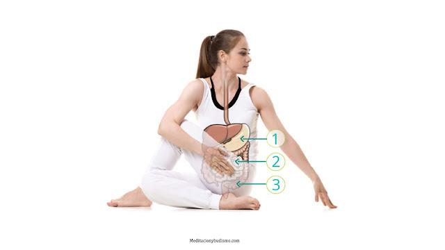 Las mejores posturas de yoga para una buena digestión